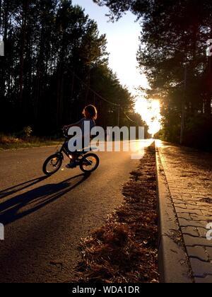 Ragazzo Bicicletta Equitazione su strada in mezzo alberi durante il tramonto Foto Stock