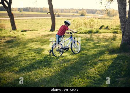 Ragazzo spingendo in bicicletta sul prato Foto Stock