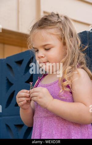 Lily fissando attentamente in un piccolo fiore che Mike ha appena dato il suo Foto Stock