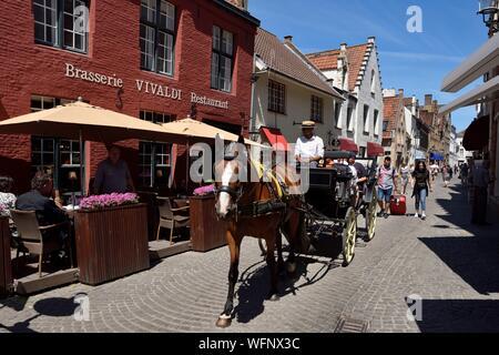 Belgio Fiandre Occidentali, Bruges, nella parte meridionale del centro storico elencati come patrimonio mondiale dell UNESCO, Wijngaardplein Square, cavallo - carrozza in Wijngaardstraat Foto Stock
