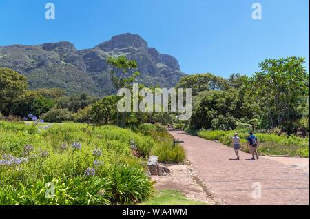 Kirstenbosch National Botanical Garden guardando verso il fronte orientale di Table Mountain e Cape Town, Western Cape, Sud Africa