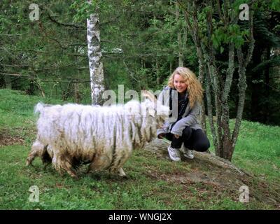 Giovane donna accovacciata da pecora sul campo erboso Foto Stock