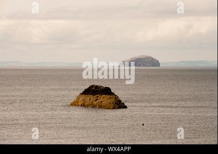 Bass rock come si vede da Dunbar shore. Dunbar è una città situata nel sud-est della Scozia. Foto Stock