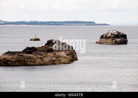 Dunbar shore come visto da Dunbar. Dunbar è una città situata nel sud-est della Scozia. Foto Stock
