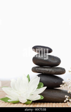 White Lotus blossom con pietre nere la pila a piccoli fiori bianchi Foto Stock