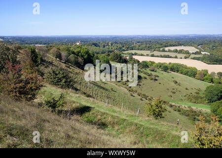 Vista su Hampshire terreni agricoli campagna dalla sommità di Beacon Hill, Burghclere, Hampshire, Inghilterra, Regno Unito, Europa Foto Stock