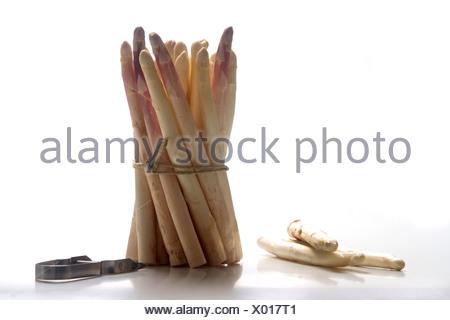 Mazzetto di asparagi bianchi, in piedi Foto Stock