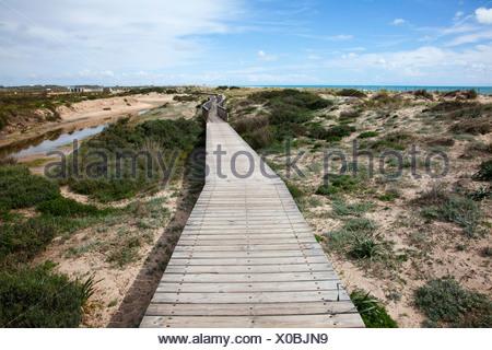 Passerella in legno nelle dune vicino a San Fernando; Andalusia Spagna Foto Stock