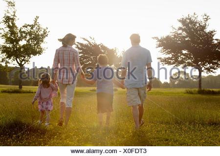 Una famiglia di due genitori e due figli che camminano mano nella mano attraverso l'erba all'aperto in estate. Foto Stock