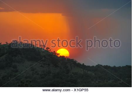 Regolazione del sole sulle colline di Boma National Park, Sudan