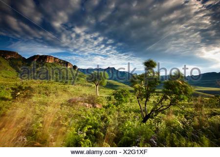 L'Anfiteatro, Royal Natal National Park, Drakensberg Mountains, KwaZuluNatal, Sud Africa Foto Stock