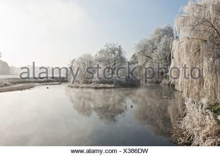 Gelido lago in inverno Foto Stock