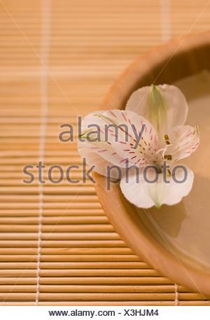 Giglio peruviano (Alstromeria) nel recipiente della maschera di fango sul tappetino di bambù Foto Stock