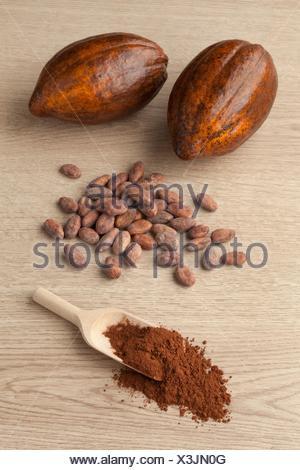 Frutto di cacao, le fave di cacao e polvere di cacao su un cucchiaio di legno. Foto Stock