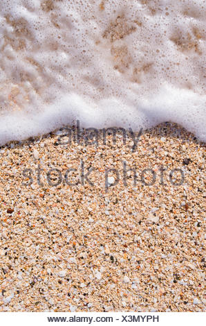 Ocean surf sulla spiaggia, Antigua, dei Caraibi Foto Stock