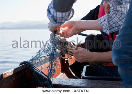 Le persone sulla barca da pesca dei granchi, Aure, Norvegia Foto Stock