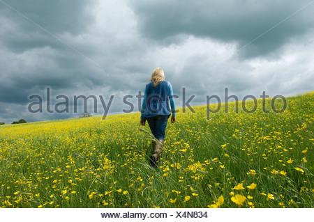 Donna che cammina nel campo di renoncules Foto Stock
