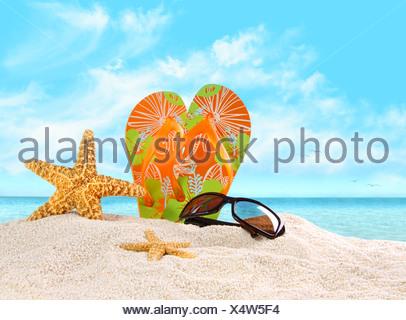 Coppia di flip-flop nella sabbia con stella marina Foto Stock