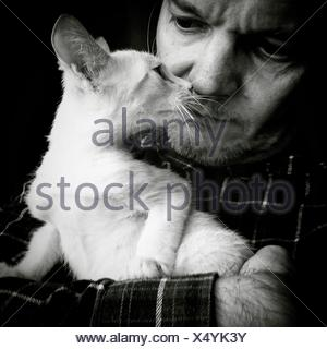 L'uomo Azienda Mentre Staring White cat Foto Stock