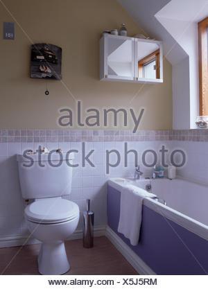 Servizi igienici e vasca con pannello di malva in piccole stanze da ...