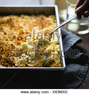 Cardo cremosa di mac e formaggio Foto Stock