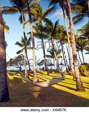 Rilassarsi in un'amaca sulla spiaggia Foto Stock