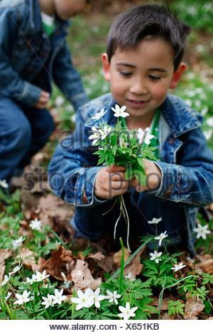 Ragazzo sorridente fiori di contenimento Foto Stock