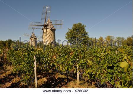 Mulini a vento di Calon, Montagne, Gironde reparto, regione Aquitania, a sud-ovest della Francia, Europa Foto Stock