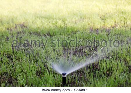 Sprinkler Del Innaffiamento Automatico Foto Stock