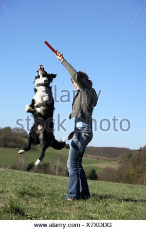Border Collie (Canis lupus f. familiaris), giovane ragazza facendo un salto del cane per un bastone in un prato Foto Stock