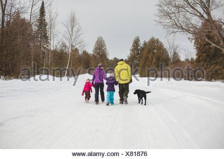Il padre e la madre di due figli e cane, passeggiate nella neve, vista posteriore Foto Stock