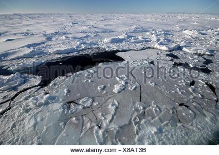 Pack Campo di ghiaccio vicino a Ross Island, Antartide Foto Stock