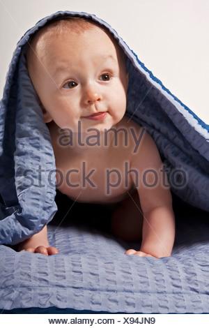 Baby boy, 8 mesi sotto una coperta Foto Stock