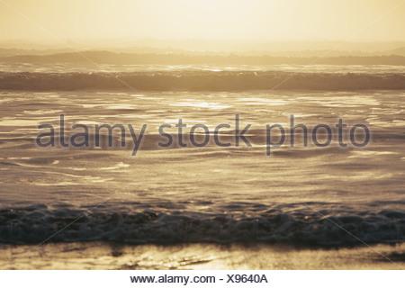 Seascape al crepuscolo, di onde che si infrangono sulla riva. Zona di marea. Lungo le coste del parco nazionale di Olympic, in Washington, Stati Uniti d'America Foto Stock