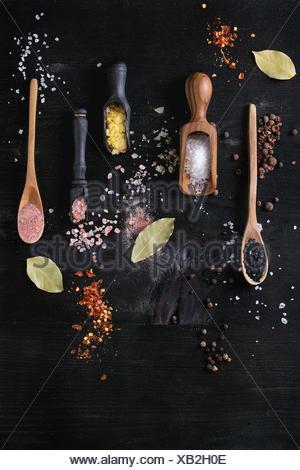 Varietà di diverse sale colorato zafferano giallo, rosa, nero himalayan, mare bianco e fleur de Sel in cucchiai di legno con il nero, il peperoncino, il pepe della Giamaica pepp Foto Stock