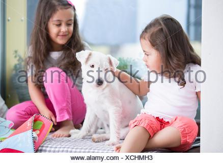 Cucciolo sul letto foto immagine stock 75291351 alamy - Foto di donne sul letto ...