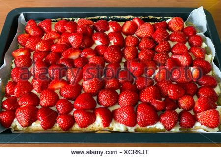 Una torta di fragole su una placca da forno Foto Stock