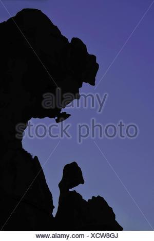 Silhouette di stranamente sagomate formazione di roccia, Francia, Corsica, Campomoro