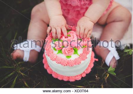 Ritagliato colpo di baby ragazza seduta su erba toccando le rose rosa sulla torta di compleanno Foto Stock