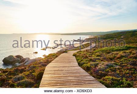 L'Italia, Sardegna, Lu Litarroni, sentiero costiero al tramonto Foto Stock