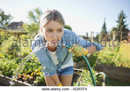 Donna di bere acqua dal tubo flessibile da giardino Foto Stock