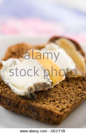 Fette di pan di zenzero con formaggio di capra e zenzero candito Foto Stock